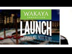 Dave & Barb Pitcock Why Wakaya Perfection - YouTube