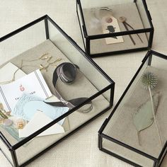 Glass Box Display http://www.westelm.com/products/glass-shadow-boxes-c101/
