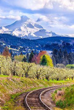Hood River Valley, #Oregon