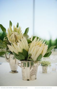 Random Silver Ware with Proteas Protea Wedding, Floral Wedding, Wedding Bouquets, Wedding Flowers, Floral Centerpieces, Wedding Centerpieces, Floral Arrangements, Wedding Decorations, Protea Centerpiece