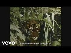 Nothing But Thieves - Trip Switch (Official Lyric Video) - YouTube