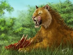 Saber-toothed tiger by Azany ----- Yummy