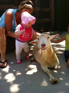 """""""Makin' new friends is my favorite thing, new friends give nice back scratches!"""" 