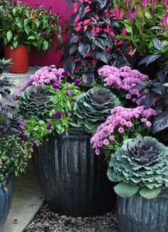 fall container update on a budget bedroom ideas concrete masonry flowers gardening ponds water features window treatments windows Fall Container Plants, Fall Containers, Container Flowers, Succulent Containers, Fall Potted Plants, Winter Container Gardening, Potted Mums, Fall Flower Pots, Fall Flowers