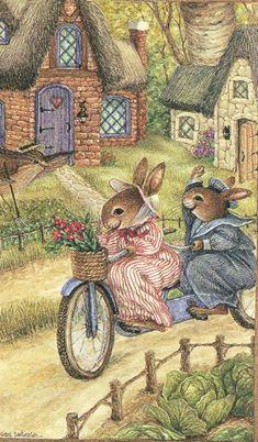 Rabbits and bicycle