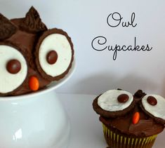 Owl Cupcakes - Sisters Shopping on a Shoestring