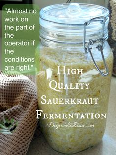 High Quality Sauerkraut Fermentation - Deep Roots at HomeDeep Roots at Home