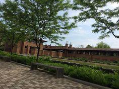 Frank Lloyd Wright's Darwin D. Martin House Complex (Buffalo, NY):