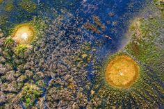 Fascinants Animaux et Paysages d'Afrique Vus du Ciel par Michael Poliza