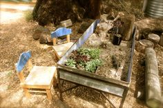 Outdoor Garden - set up a plant propagation/nursery on bench in the veggie garden. Outdoor Learning Spaces, Kids Outdoor Play, Outdoor Playground, Outdoor Fun, Backyard Projects, Outdoor Projects, Sensory Table, Sensory Play, Preschool Playground