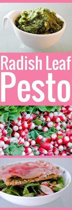 Ne jetez plus vos fanes de radis ! Préparez un délicieux pesto de fanes de radis à mettre sur vos pâtes, canapés et tartines.