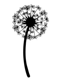 Image result for dandelion black and white drawing