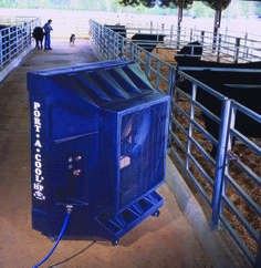 Port-A-Cool evaporative cooler used in a cow barn, agricultural Industrial Fan, Evaporative Cooler, Coolers, Cow, Barn, Home Appliances, Cool Stuff, House Appliances, Converted Barn