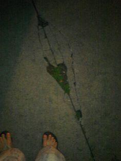 Midnight walk to clear my heart...