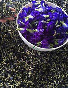 Blue Butterfly Tea - Dried Blue Butterfly Pea Flowers, >>> More info could be found at the image url. Butterfly Pea Flower, Flower Tea, Natural Food Coloring, Drinking Tea, Healthy Drinks, Herbalism, Herbs, Flowers, Thailand