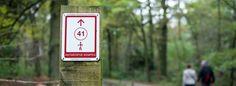 Antwerpse Kempen. Verschillende bezienswaardigheden, attracties, wandel- en fietsroutes zijn op deze pagina terug te vinden. Wat een leuk aanbod!