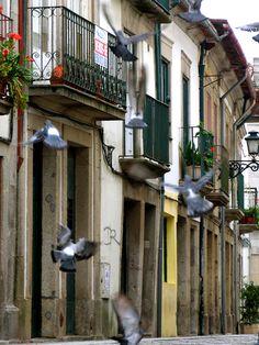 #Porto   #Portugal #dourovalley
