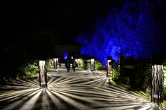 Projection mapping at Foresta Lumina