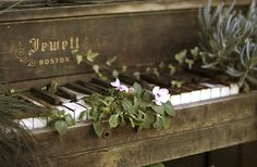 old piano with flowers growing out of it
