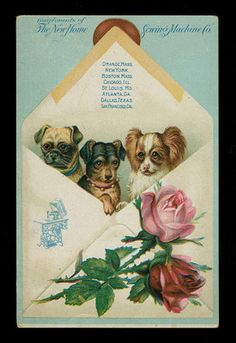 Pug, Rottweiler, & Papillon Dogs-Victorian Trade Card-New Home Sewing Machine