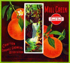 Lindsay Tulare California Kay Bee Orange Citrus Fruit Crate Label Art Print
