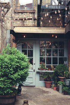 little strung lights and potted plants frame a cozy front entry