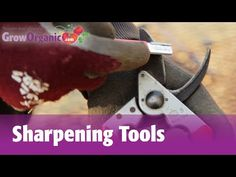 How to Sharpen Your Garden and Workshop Tools