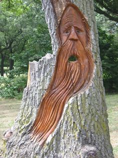 Wood spirit Nature Verte, Dremel Wood Carving, Tree People, Willow Wood, Picture Tree, Tree Faces, Wood Images, Tree Carving, Unique Trees