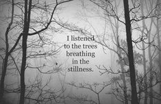 I listen to the trees breathing..