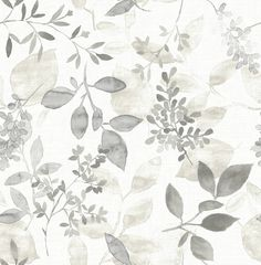Shop Brewster Home Fashions Brewster Wallcovering Eclipse Gossamer Grey Botanical Wallpaper at Lowe's Canada. Find our selection of wallpaper at the lowest price guaranteed with price match. Watercolor Wallpaper, Botanical Wallpaper, Watercolor Design, Watercolor Print, Watercolor Leaves, Botanical Prints, Peel And Stick Wallpaper, Wallpaper Roll, Gray Wallpaper