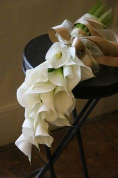 Pure white callas with slightly creamy/champagne ribbon.