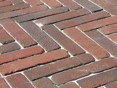 Groene aanslag verwijderen en tegels schoonmaken | vtwonen Wood, Outdoor Decor, Home Decor, Tips, Madeira, Homemade Home Decor, Woodwind Instrument, Wood Planks, Trees