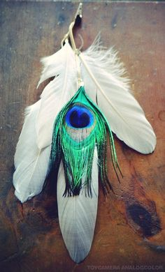 Oasis Peacock Feather Hair Clip by francisfrank on Etsy, $16.00