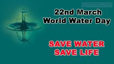 Know-Why 22nd March Is Celebrated As World Water Day And Why It is Important To Save Water - YouTube International Water Day, Save Water Save Life, World Water Day, Online Blog, Home Remedies, March, Parenting, Community, Celebrities