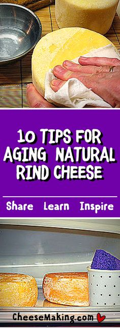 10 Tips for Aging Your Natural Rind Cheeses (Artisan Cheese Making) Goat Milk Recipes, Cheese Recipes, Snack Recipes, Detox Recipes, How To Make Cheese, Food To Make, Making Cheese, Butter Cheese, Cheese Sauce