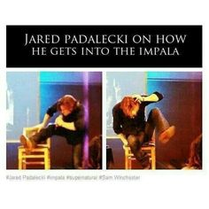 XD omg. He is just too big for this world. Actual Moose Jared Padalecki. aw