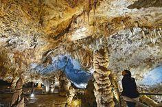 ***** Cueva Pozalagua (Vizcaya, España) La cueva de Pozalagua, en la comarca vizcaína de las Encartaciones, esconde una bóveda de 125 metros de longitud, 70 de anchura y 12 de altura con una de las mayores concentraciones de estalactitas excéntricas, formaciones de calcita y dolomita que cuelgan del techo de la cueva enredándose de forma caprichosa, como raíces de mármol. La gruta se descubrió casualmente en 1957, y se puede visitar en una ruta guiada de 45 minutos que finaliza en el mirador