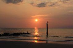 tybee island living | 800-476-0807
