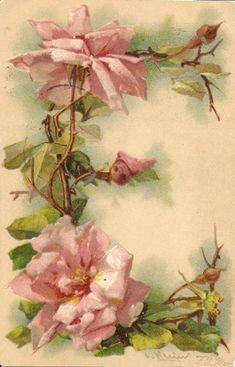 """E"" Vintage Floral Postcard by Catherine Klein Catherine Klein, Images Vintage, Vintage Cards, Vintage Postcards, Art Floral, Vintage Rosen, Decoupage Vintage, Floral Letters, Rose Art"
