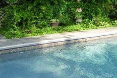 sandstone pool liner - Google Search