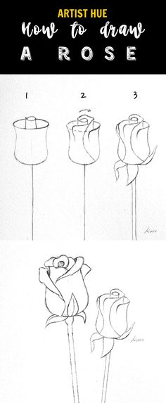 Terrific Free drawing flowers pencil Concepts Blossoms usually are NOT simple to draw in! Well-executed plant pen-drawings will be popular on a number of social netw Easy Pen Drawing, Easy Realistic Drawings, Easy Love Drawings, Realistic Flower Drawing, Flower Drawing Tutorials, Cool Art Drawings, Pencil Art Drawings, Art Drawings Sketches, Horse Drawings