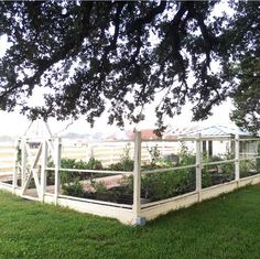 Chip and Joanna Gaines House Tour - Fixer Upper Farmhouse Absolutely love the enclosed garden! Farm Gardens, Outdoor Gardens, Joanna Gaines Farmhouse, Vegetable Garden Planning, Vegetable Gardening, Magnolia Farms, Farmhouse Garden, Chip And Joanna Gaines, Up House