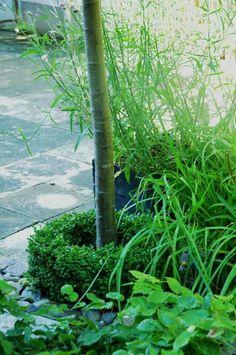Britt-Maries garden