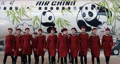 なんと飛行機にはパンダが!