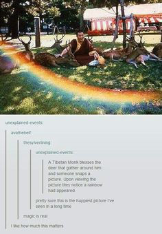 Monks. Deer. And rainbows