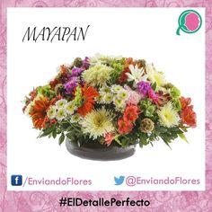 Las flores siempre enamoran. #EnviandoFlores #UnHermosoDetalle #UnaOcasionEspecial #LasFloresPerfectas  Visita nuestra página: http://ift.tt/28ZnP63