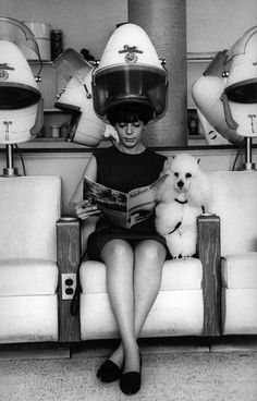 A woman with a poodle in a beauty salon, New York