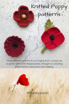 Knitted Poppy patterns – three versions to cater for all levels of knitter – Nicky Barfoot Knitted Poppy Free Pattern, Knitted Flowers Free, Leaf Knitting Pattern, Knitted Poppies, Baby Cardigan Knitting Pattern, Knitting Stiches, Knitting Patterns Free, Crochet Flowers, Free Knitting