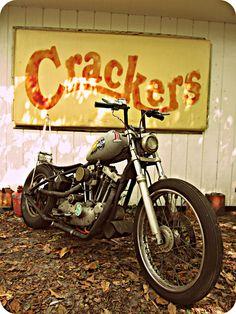 The Horse Backstreet Choppers Magazine: girls Harley Bikes, Harley Davidson Motorcycles, Custom Motorcycles, Custom Bikes, Custom Bobber, Custom Harleys, Bobber Motorcycle, Bobber Chopper, Old School Motorcycles