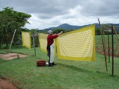Batik hung out in the Swaziland sunshine